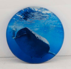 "4"" Sublimatable Round Glass Coaster - Lucky Dog Custom Creations"