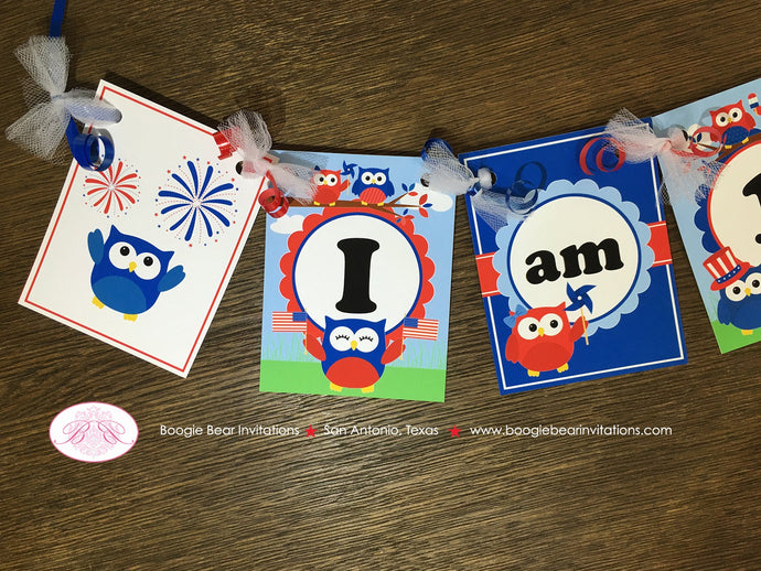 4th of July Highchair I am 1 Party Banner Birthday Boy Girl Outdoor Summer Patriotic Flag Owl 1st 2nd Boogie Bear Invitations Blakeley Theme