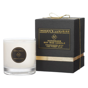 Apple Spice 2 Wick Candle