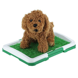 Uptown Vibez Pet Potty Pad