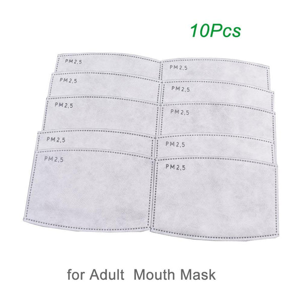 PM2.5 Mask Filter (10pcs)