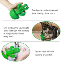 Cactus Teeth Cleaning for Pets