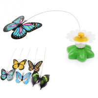 Cat Butterfly Toy