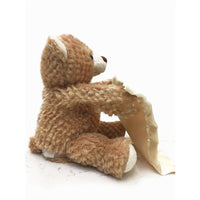 Peek-a-Boo Plush Teddy Bear