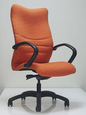 High Back Reclining Study Chair