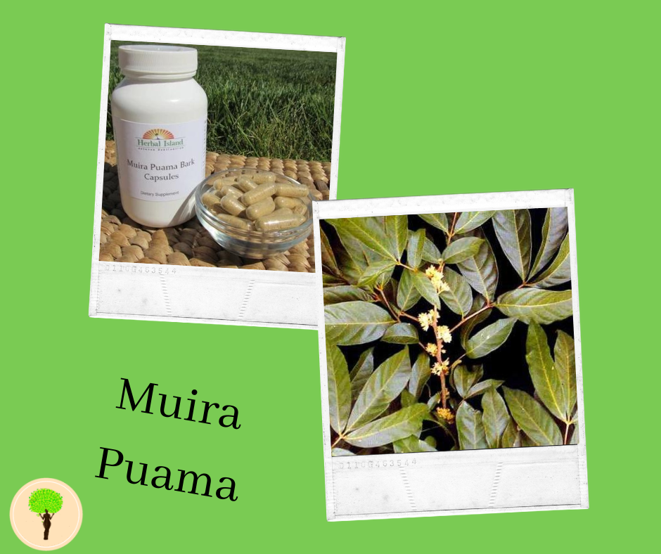 Understanding The Link Between Muira Puama And Your Sexual Drive