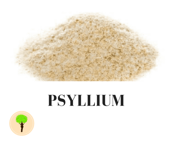 Psyllium As Natural Colon And Parasite Detox