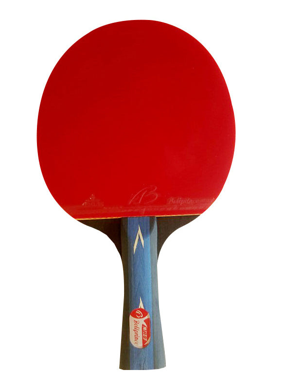 Table Tennis Paddle Ping Pong Racket Set-1 Paddle