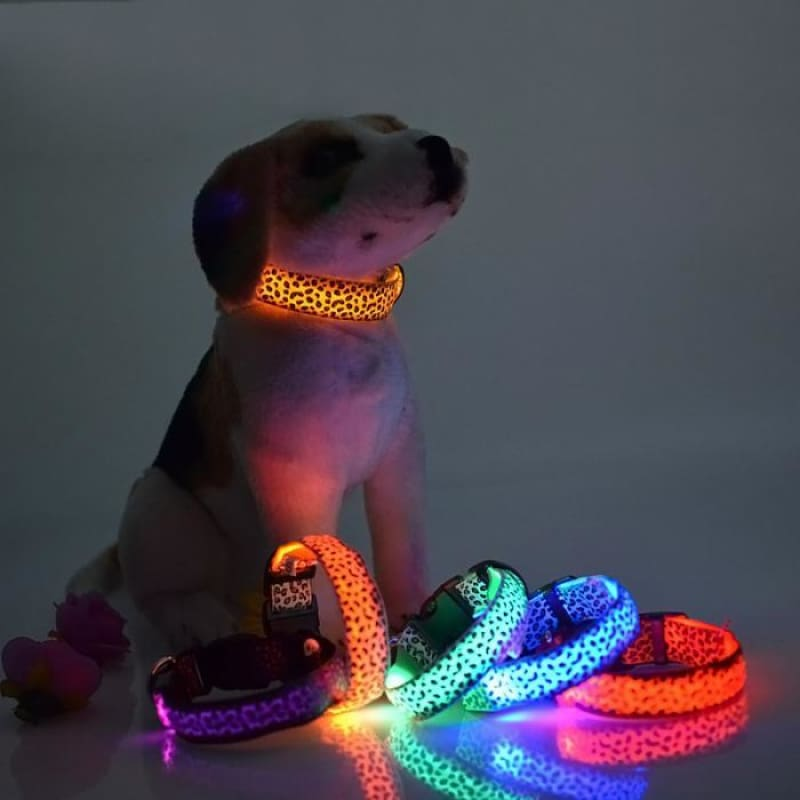Leopard LED Pet Dog Collar