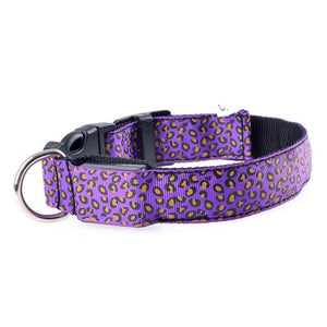 Leopard LED Pet Dog Collar - Purple / S