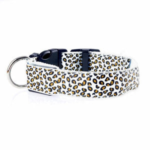 Leopard LED Pet Dog Collar - White / S
