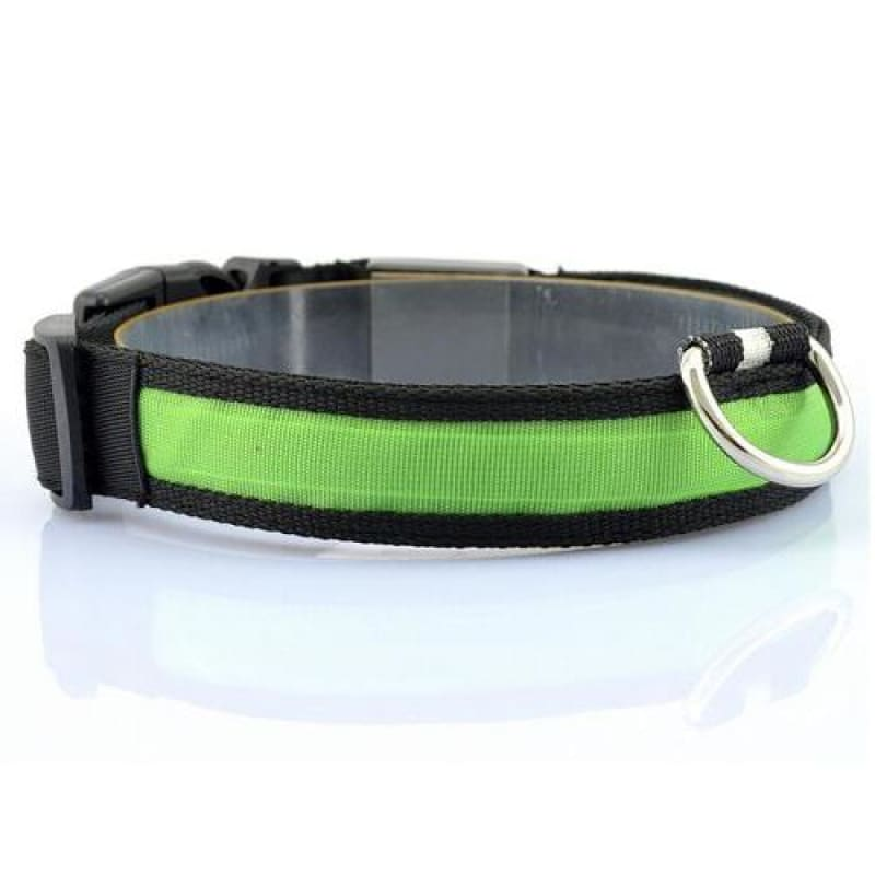 Nylon LED Pet Dog Collar - Green / S