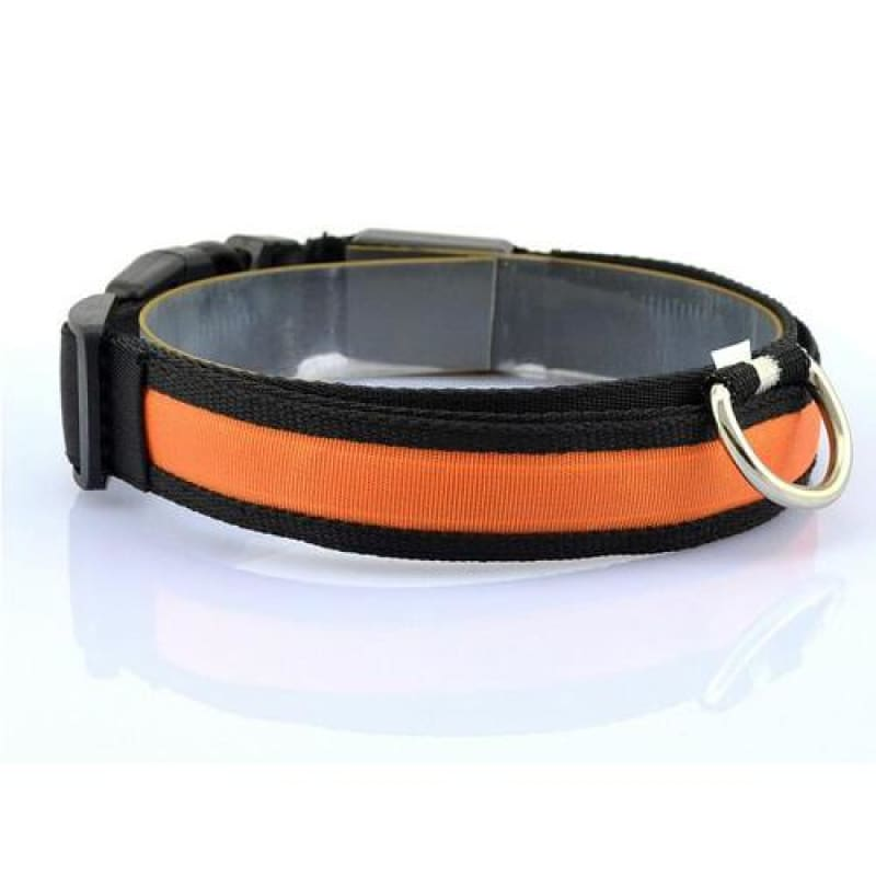 Nylon LED Pet Dog Collar - Orange / S
