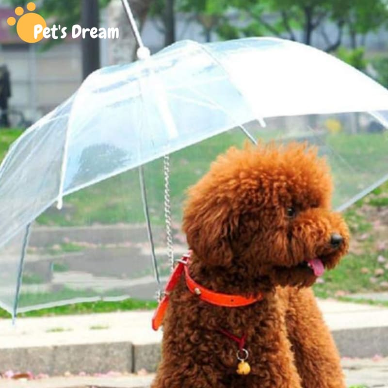 Premium Dog Umbrella