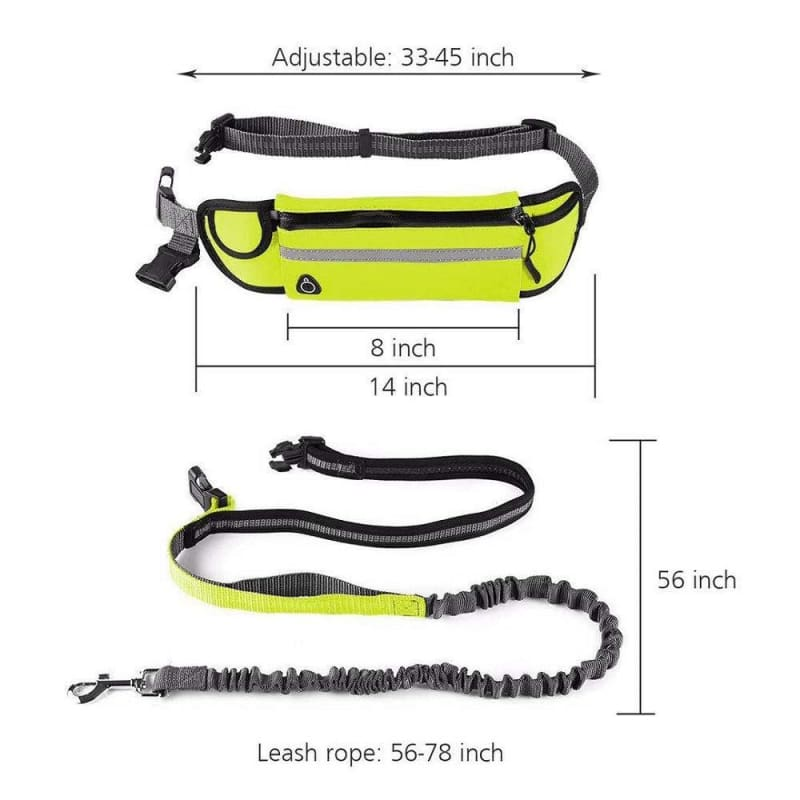 Premium Hands- Free Bungee Dog Leash - Leashes