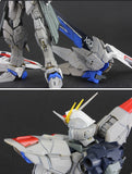 UC > 1/100 Freedom Gundam Resin conversion resin kit
