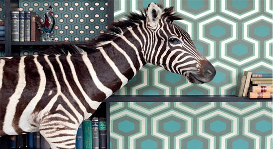 geometric wallpaper blue green gray white black wall books zebra