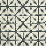 Schumacher Andromeda Charcoal Fabric