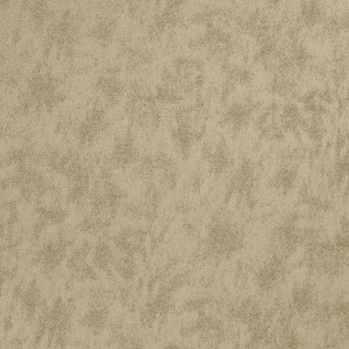 Trend 03791 Earth Fabric - Fabric