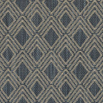 Ralph Lauren Bulan Weave Ink Fabric