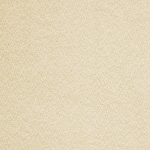 Trend 01186 Champagne Fabric - Fabric