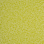 Baker Lifestyle Ming Lime/Silver Wallpaper