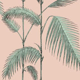 Cole & Son Palm Leaves Plaster Pink/Mint Wallpaper
