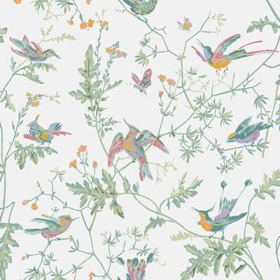 Cole & Son Hummingbirds Pastel Wallpaper - Wallpaper