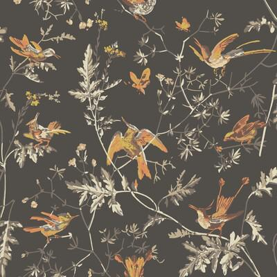 Cole & Son Hummingbirds Charcoal/Ginger Wallpaper - Wallpaper