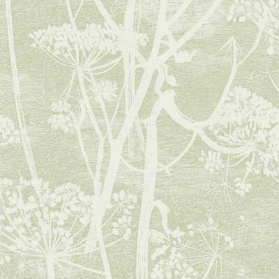 Cole & Son Cow Parsley Olive Wallpaper - Wallpaper