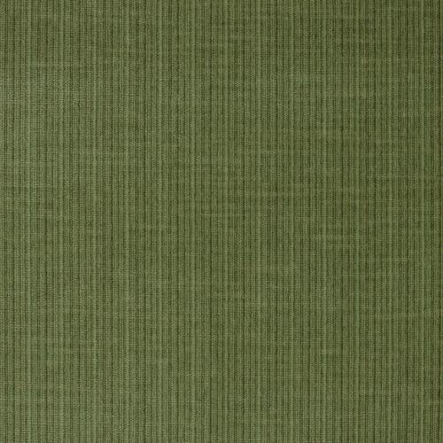 Schumacher Antique Strie Velvet Grass Fabric - Fabric