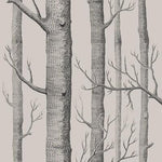 Cole & Son Woods Linen/Charcoal Wallpaper