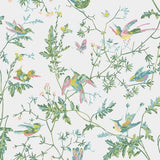 Cole & Son Hummingbirds Green/Pink Wallpaper