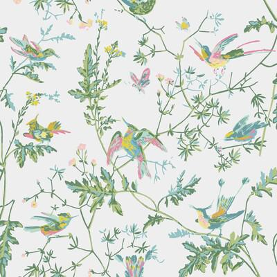 Cole & Son Hummingbirds Green/Pink Wallpaper - Wallpaper