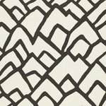 Schumacher Zimba Charcoal Fabric