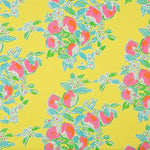 Lee Jofa Pink Lemonade Sunshine Fabric