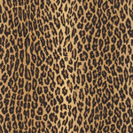 Ralph Lauren Aragon Ocelot Wallpaper