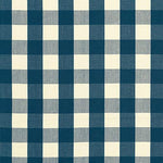 Schumacher Camden Cotton Check Indigo Fabric