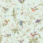 Cole & Son Hummingbirds Duck Egg Fabric