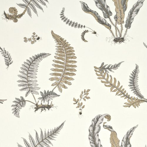 G P & J Baker Ferns Dove Grey/Silver Wallpaper - Wallpaper