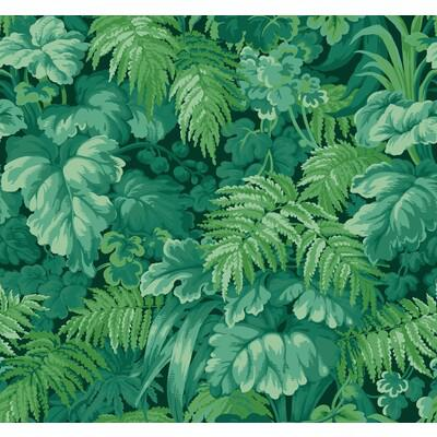 Cole & Son Royal Fernery Forest Green Wallpaper - Wallpaper