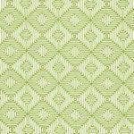 Schumacher Amazing Maze Palm Fabric