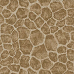 Kravet Avikar Almond Fabric
