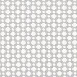 Schumacher Betwixt Zinc/Blanc Fabric