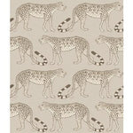 Cole & Son Leopard Walk Stone  Wallpaper