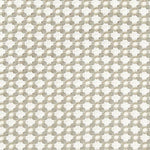 Schumacher Betwixt Stone/White Fabric