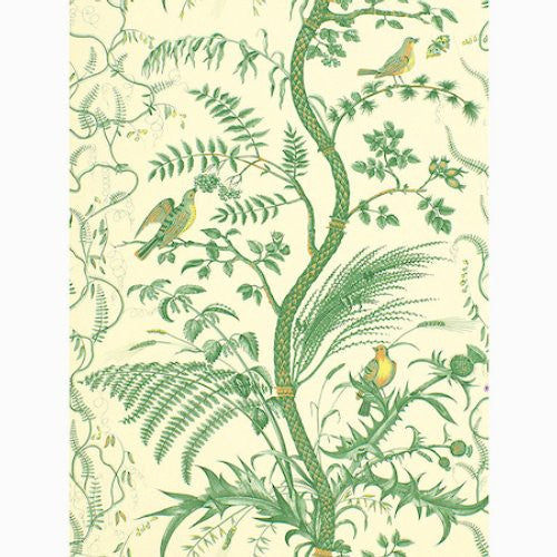 Brunschwig & Fils Bird And Thistle Green Wallpaper - Wallpaper
