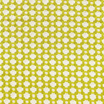 Schumacher Betwixt Chartreuse / Ivory Fabric