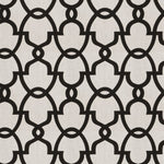 Fabricut The Dance Black White Fabric