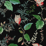 Kravet Owlish Black Fabric